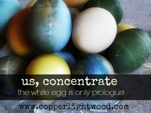 us, concentrate: the white egg is only prologue (easter at Copperlight Wood)
