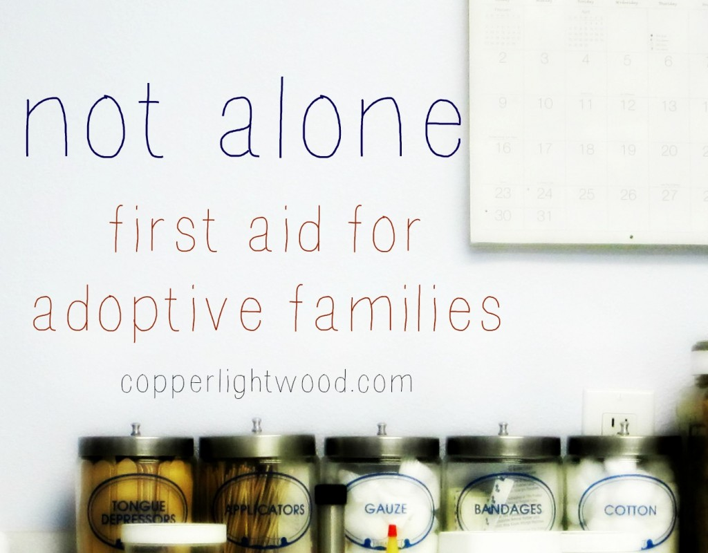 not alone: first aid for adoptive families (Copperlight Wood)