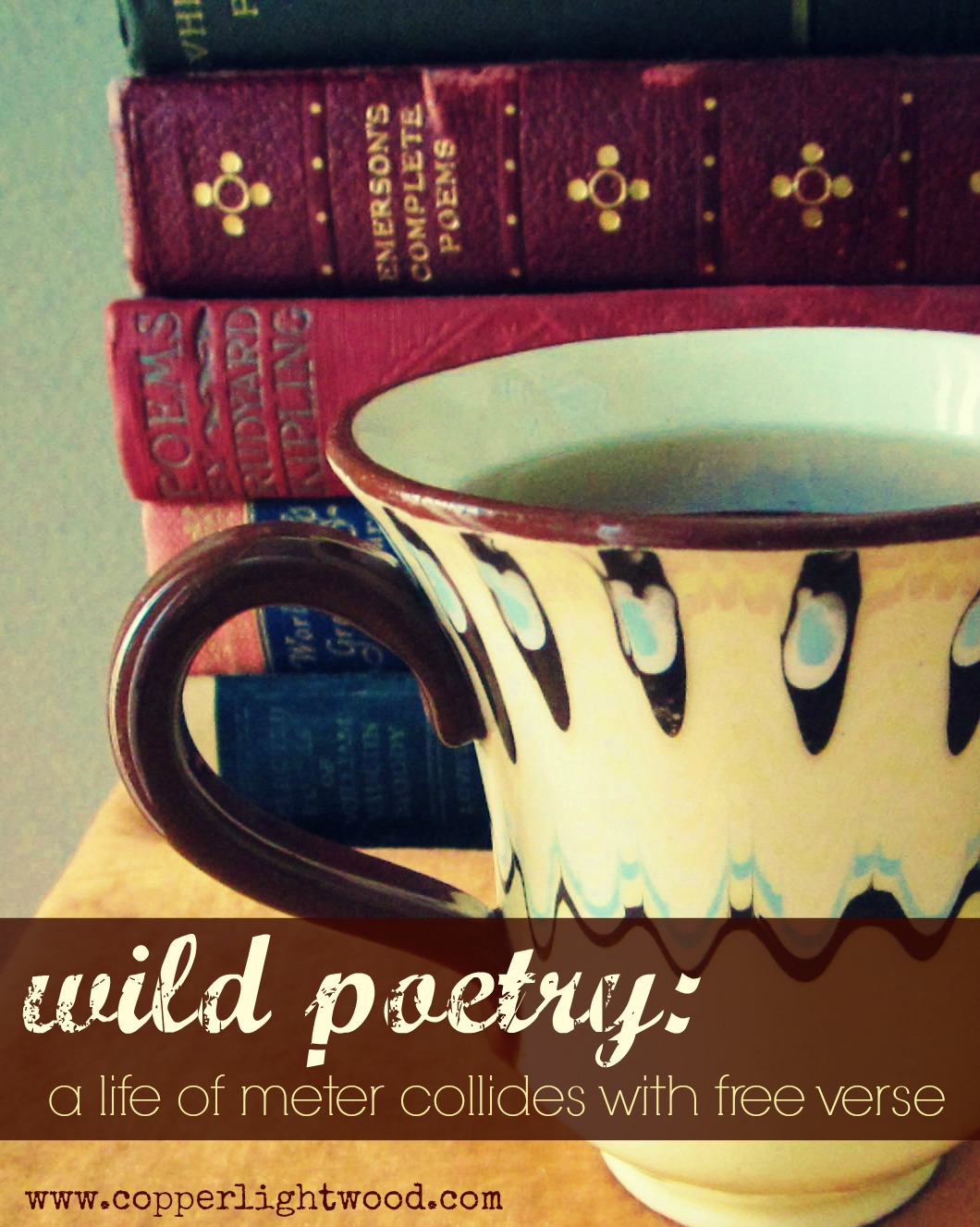 wild poetry: a life of meter collides with free verse