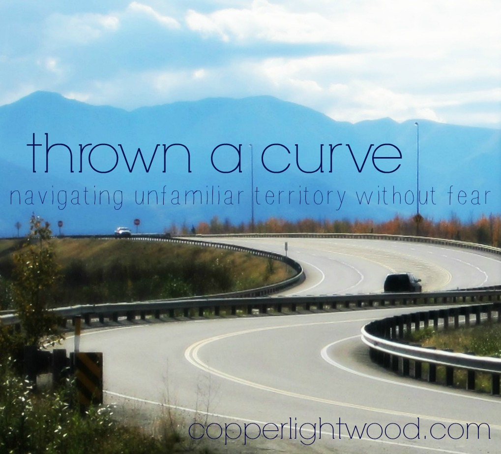 thrown a curve: navigating unfamiliar territory without fear (Copperlight Wood)