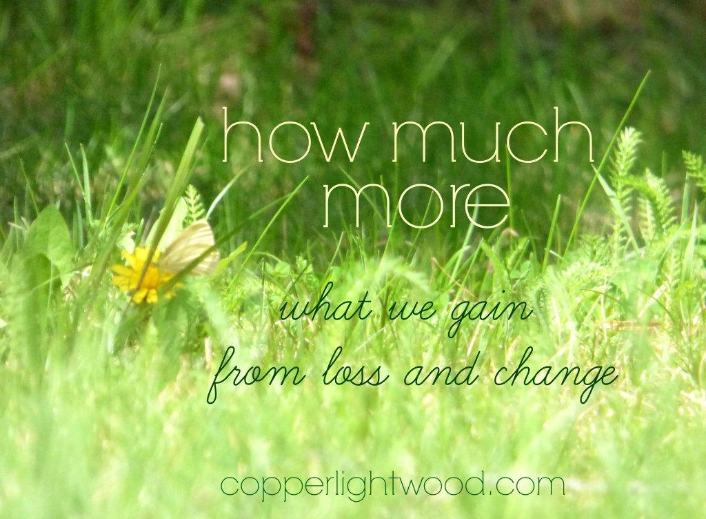how much more: what we gain from loss and change - Copperlight Wood