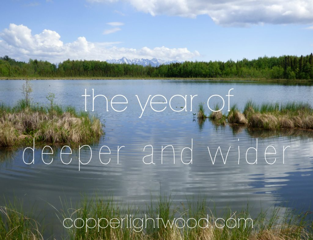 the year of deeper and wider