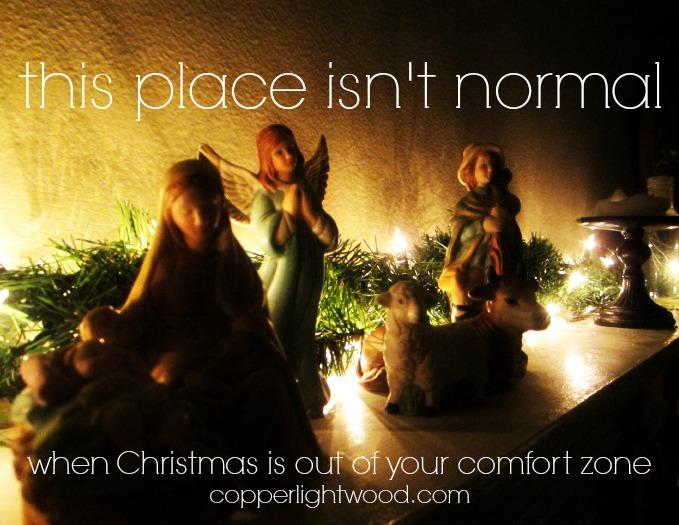 this place isn't normal: when Christmas is out of your comfort zone