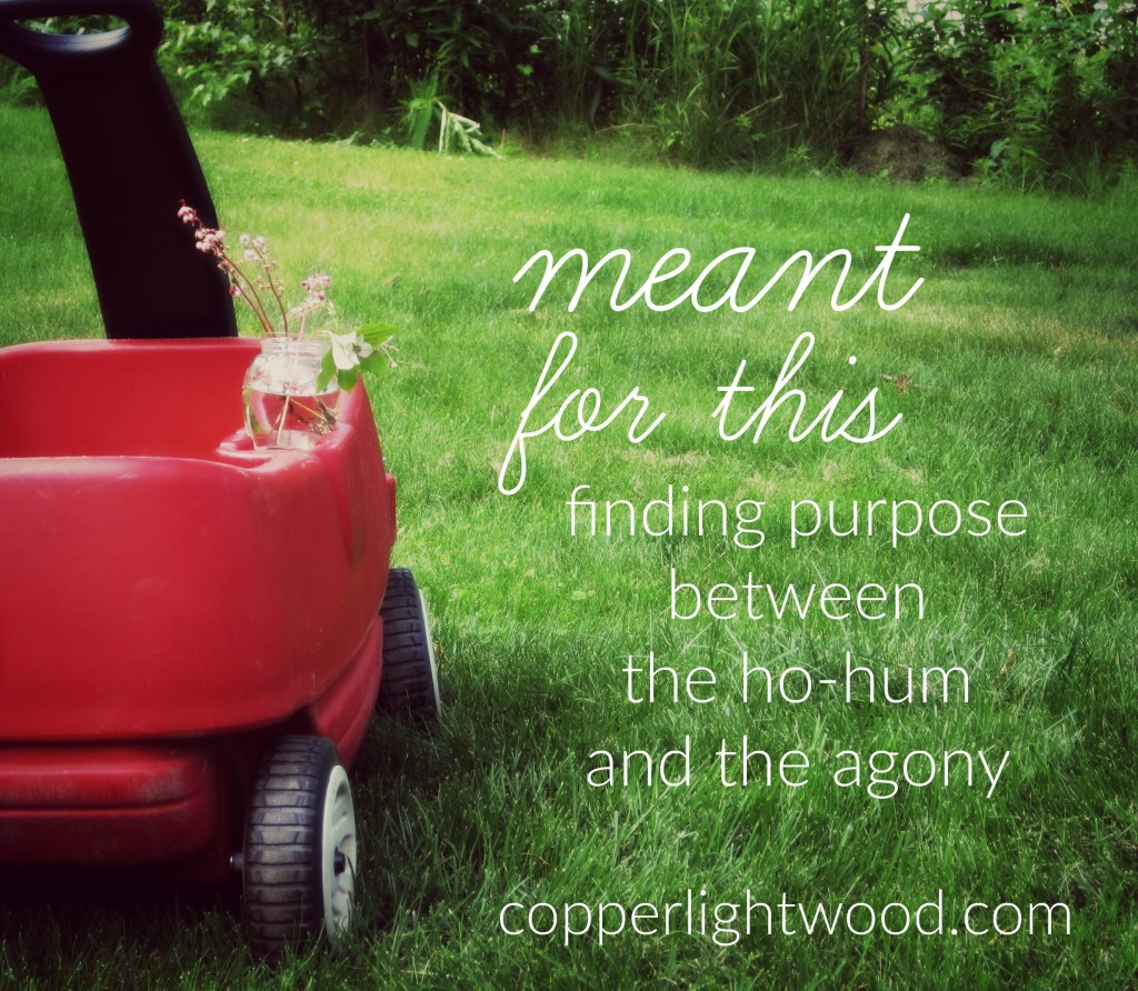meant for this: finding purpose between the ho-hum and the agony