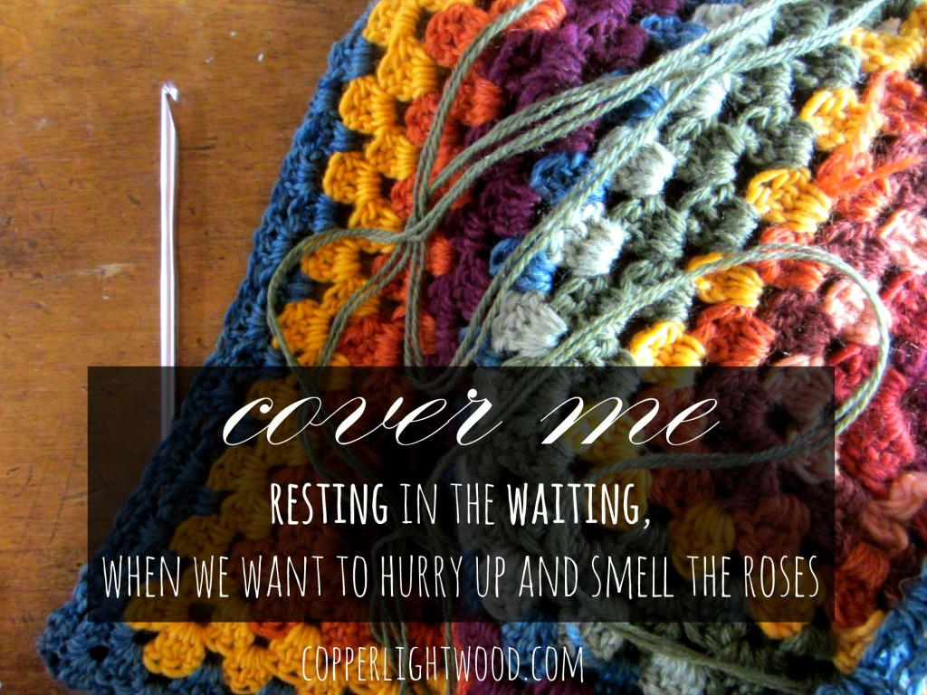 cover me: resting in the waiting, when we want to hurry up and smell the roses (Copperlight Wood)