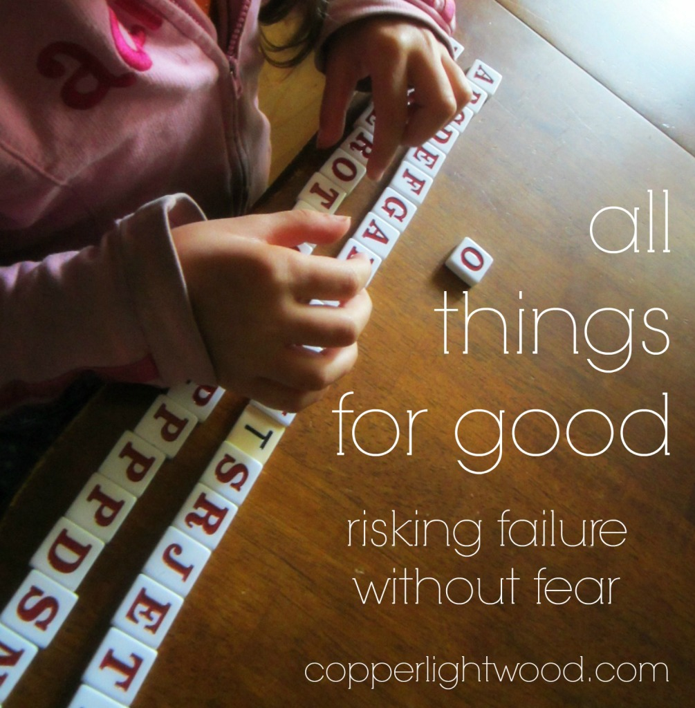 all things for good: risking failure without fear