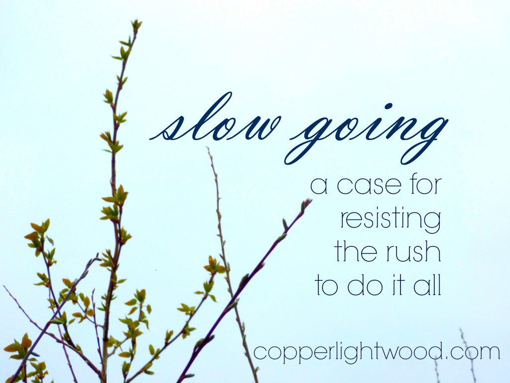 slow going: a case for resisting the rush to do it all