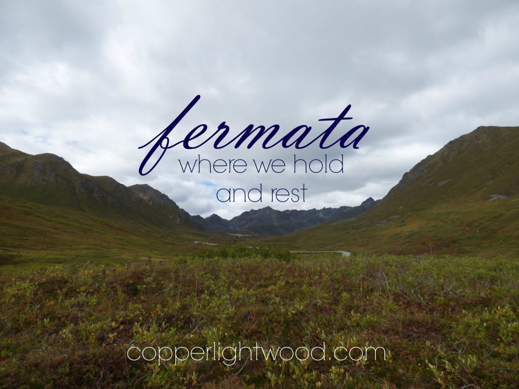 fermata: where we hold and rest (Copperlight Wood)
