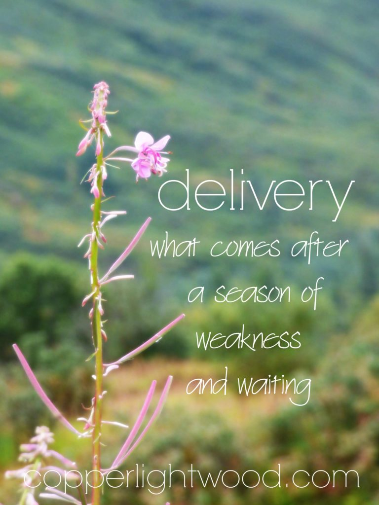 delivery: what comes after a season of weakness and waiting