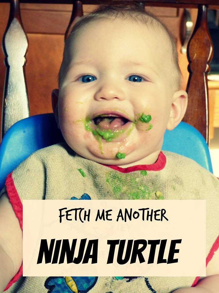 fetch me another ninja turtle